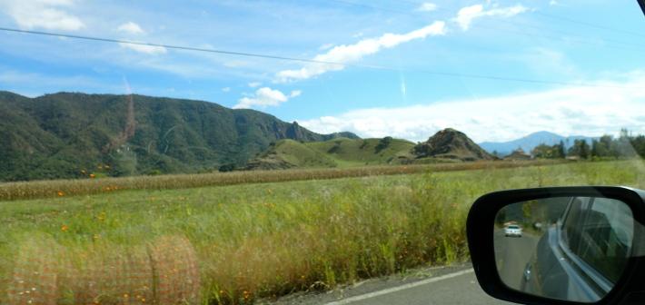 GDL Roadtrip
